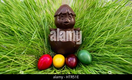 chocolate chicken sitting on a nest of grass with colorful eggs - Stock Photo