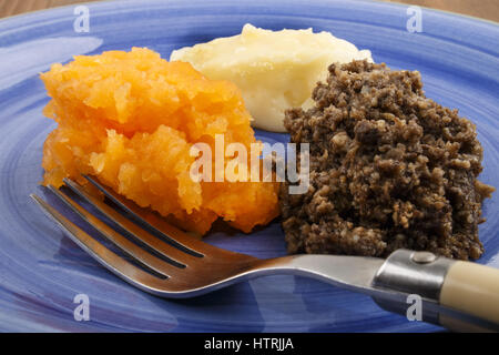 typical scottish dish, haggis with mashed potato and turnip on a plate - Stock Photo