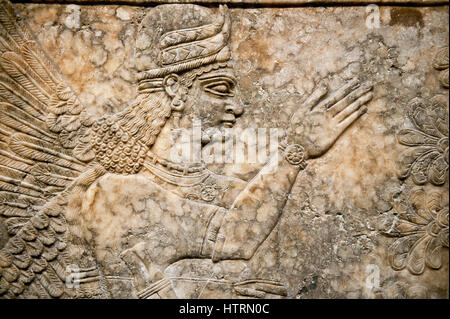 Assyrian relief sculpture panel  of a female protective spirit  from Nimrud, Iraq.  865-860 B.C North West Palace, - Stock Photo