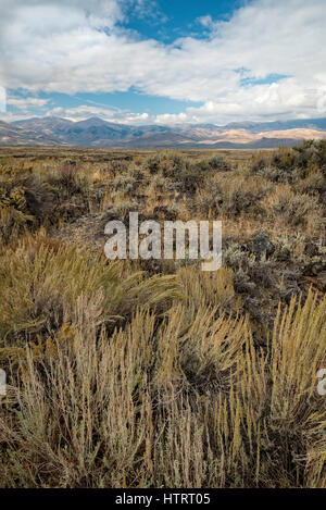Lava and sage landscape at Craters of the Moon National Monument and Preserve, Idaho, USA. - Stock Photo
