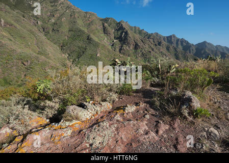 Volcanic landscape in Anaga mountains, Tenerife, Canary islands, Spain. - Stock Photo