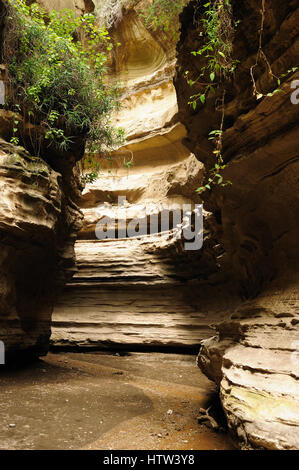 Water-gouged gorges  in the Hells Gate National Park in Kenya - Stock Photo