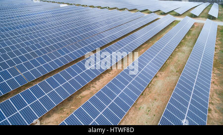 Solar panels in array Capturing sunlight to convert it to green renewable energy. It's clean. No pollution and no - Stock Photo