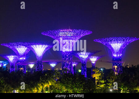 by the light and music show called the ocbc garden rhapsody lighting up the supertrees at the - Garden By The Bay Music