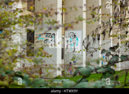 Tree branches provide ideal framing of this street art piece on an abandoned building - Stock Photo