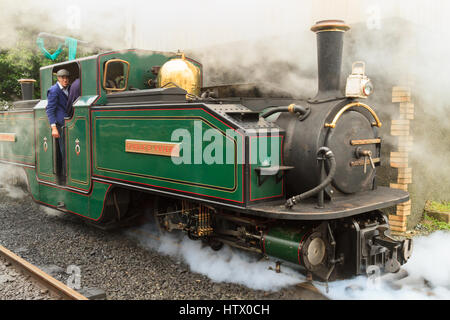The narrow gauge Fairlies patent steam engine named Iarll Meirionnydd  on the historic Ffestinog and Welsh Highland - Stock Photo