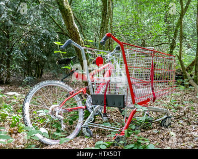 Red bicycle and shopping cart trolley abandoned in overgrown wood, London, England, UK - Stock Photo