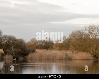 A gorgeous lake in Wivenhoe. - Stock Photo