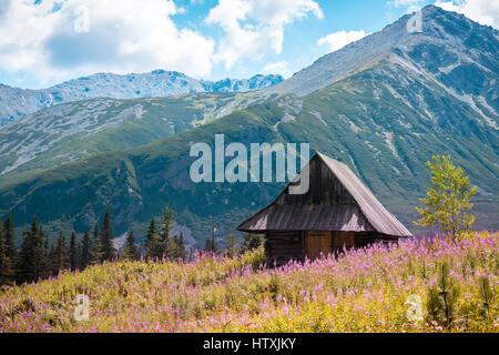 Summer view to Hala Gasienicowa in valley, Tatra mountains Zakopane Poland - Stock Photo