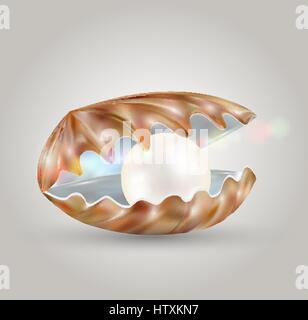 bright pearl in a opened sea shell - Stock Photo