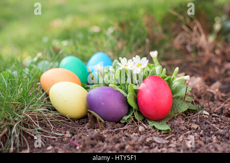 Five easter eggs in a garden with flowers - Stock Photo