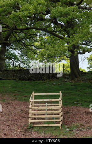 A wooden fence tree guard to protect a young tree from being nibbled by sheep in the Lake District, north west England - Stock Photo