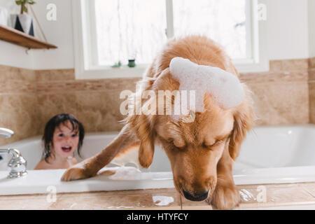 Girl in bath with golden retriever dog - Stock Photo