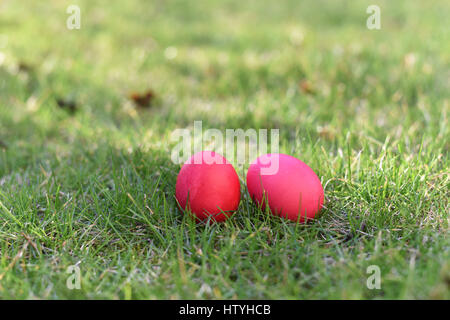 Two red easter eggs in a grass - Stock Photo