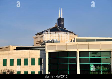 Chicago's Willis Tower (formerly Sears Tower) almost appears to be rising from the roof of the Shedd Aquarium. Chicago, - Stock Photo