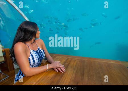 Maldives, Rangali Island. Conrad Hilton Resort. Couple at Ithaa underwater restaurant. (MR) - Stock Photo