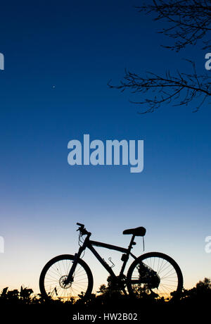 Silhouette of MTB bike at sunset under tree on blue sky with venus planet - Stock Photo
