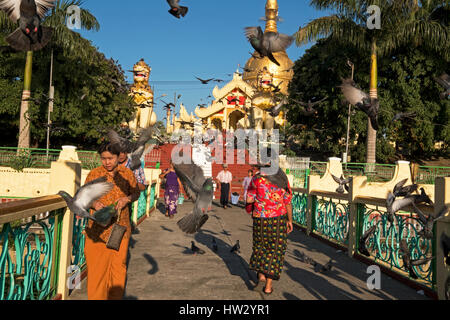 Visitors are surrounded by birds at the entrance to the Maha Wizaya Pagoda in Yangon, Yangon Region, Myanmar - Stock Photo