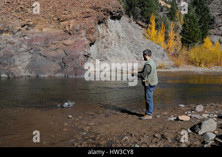 A man wearing a fishing vest stands on the edge of a river catching a fish with a fishing pole in the autumn. - Stock Photo