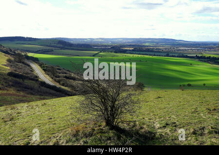 A view from Ivinghoe Beacon - Stock Photo