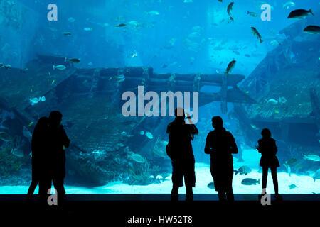 Silhouettes of people against a big aquarium. Tourist looking fish in aquarium. - Stock Photo
