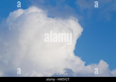 Big cumulus cloud with some black clouds, previous a storm. - Stock Photo
