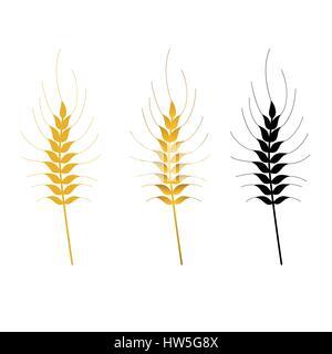 wheat vector isolated set - Stock Photo
