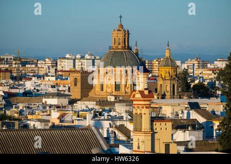 Spain, Andalusia, Seville, Encarnacion-Regina district, Plaza de la Encarnacion, general view - Stock Photo