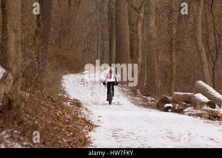 Bicyclist on snow covered woodland trail - Stock Photo