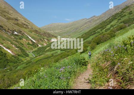 Hiker on Summit Pass Trail, Chugach National Forest, Alaska. - Stock Photo