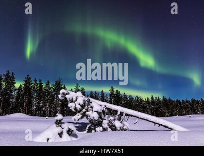 Snowy night in Finland - Stock Photo