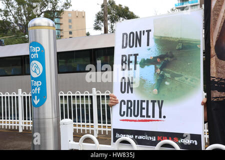 Sydney, Australia. 18 March 2017. Animal rights activists protest at Rosehill Station against horse racing on Golden - Stock Photo