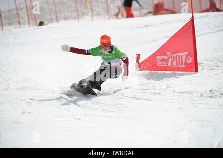 Sierra Nevada, Spain. 16th Mar, 2017. Tomoka Takeuchi (JPN) Snowboarding : Tomoka Takeuchi of Japan competes in - Stock Photo