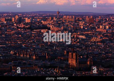 France, Paris, UNESCO World Heritage Site, Notre Dame de Paris cathedral on the Cité island and Paris' town hall - Stock Photo