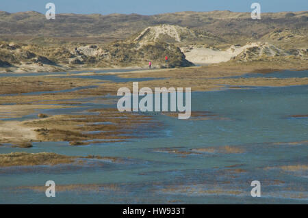 National parc the Slufter onf the island Texel, the Netherlands - Stock Photo