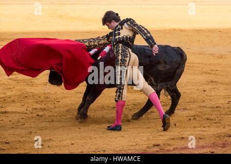 Spain, Andalusia, Seville, faena of novillero Curro Duran, May 2016 - Stock Photo