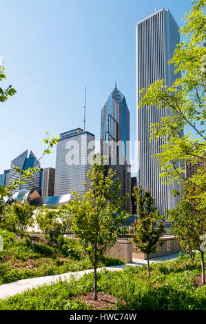 Buildings on E Randolph St from Grant Park in The Loop district of Chicago - Stock Photo