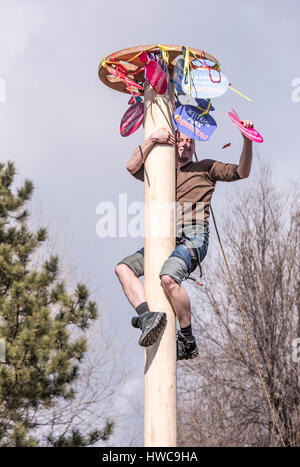 Rostov-on-Don,Russia - February 26, 2017: Maslenitsa- the guy comes down from the post with the prize for Shrovetide - Stock Photo