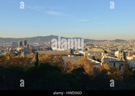 Spain, Catalonia, Barcelona, general view from Montjuic hill - Stock Photo