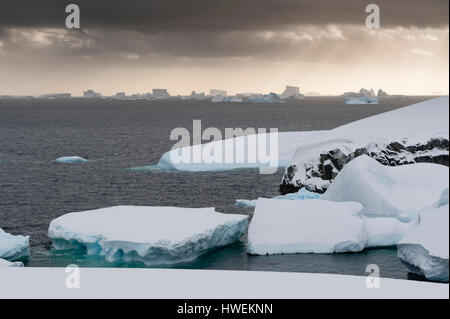 Icebergs near Petermann Island, Antarctica - Stock Photo