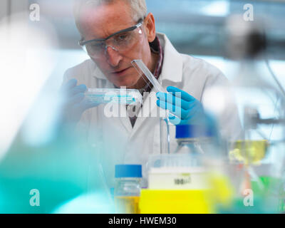 Biotechnology Research, scientist viewing samples in a multi well plate during an experiment in the laboratory