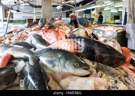 AUCKLAND, NEW ZEALAND - MARCH 1, 2017: Fresh fish displayed in the Auckland fish market in the Wynyard district - Stock Photo