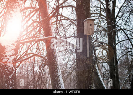 birdhouse in a tree in winter - Stock Photo