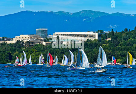 View from Lake Geneva towards the Ariana Park with the UN buildings of the Palais des Nations and the Intercontinental - Stock Photo