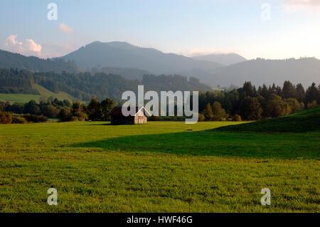 Alpine pastures in the Wertachtal valley, Wertach, Oberallgäu, Bavaria, Germany - Stock Photo