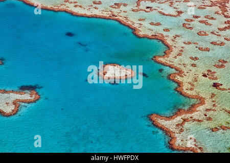 Part of Hardy Reef in the central GBR-section off Whitsunday Island as seen from the air. In the centre is the small patch-reef known as 'Heart Reef'