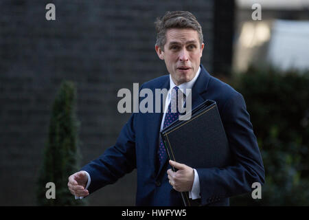 London, UK. 21st Mar, 2017. Gavin Williamson MP, Chief Whip, arrives at 10 Downing Street for a Cabinet meeting. - Stock Photo