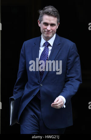London, UK. 21st Mar, 2017. Gavin Williamson chief whip seen attending the weekly cabinet meeting in Downing street. - Stock Photo