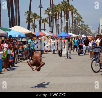Los Angeles, USA - July 14, 2013: Acrobat on Venice Beach Entertains the weekend Visitors,California, USA. - Stock Photo