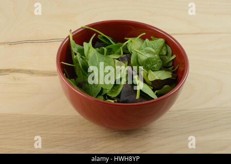 Fresh baby spinach leaves in red bowl - Stock Photo